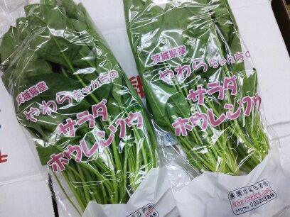 サラダほうれん草